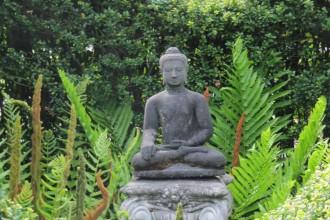 Garden118
