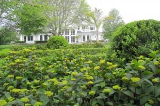 Garden121