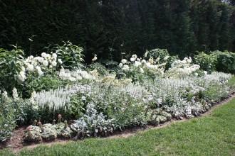 Garden28