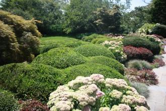 Garden40