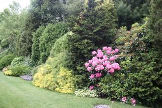 Garden45