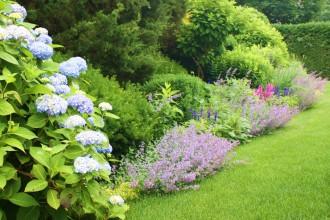 Garden46