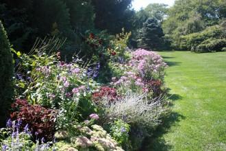 Garden47