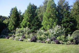 Garden48