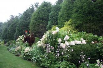 Garden80