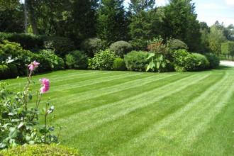 Garden90