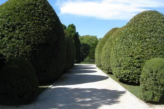 Garden92
